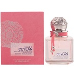 Viaje a Ceylan  perfume for Women by Adolfo Dominguez 2014