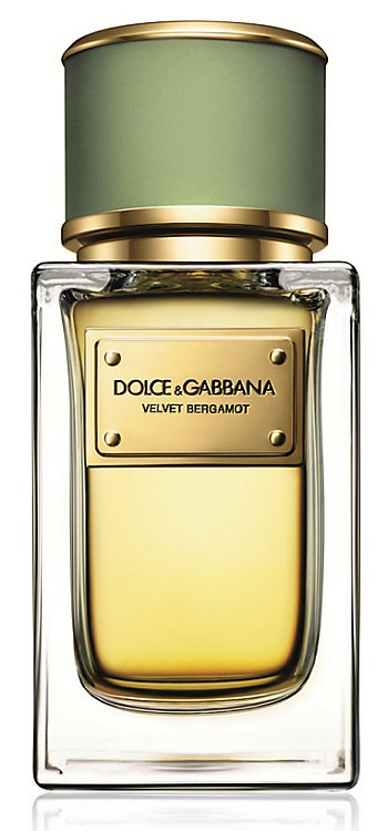 Velvet Bergamot cologne for Men by Dolce & Gabbana