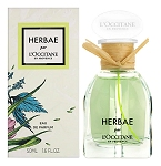 Herbae  perfume for Women by L'Occitane en Provence 2019