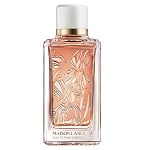 Maison Lancome Iris Dragees Unisex fragrance by Lancome