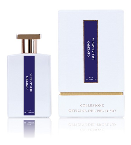 Ginepro Di Calabria cologne for Men by Officine del Profumo