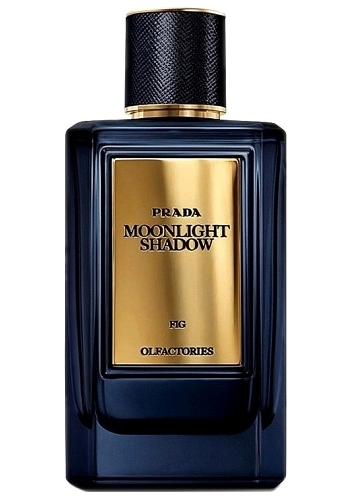 Olfactories Moonlight Shadow Unisex fragrance by Prada