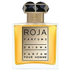 Enigma Parfum  cologne for Men by Roja Parfums 2013