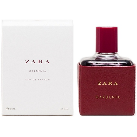 Leather Collection Gardenia perfume for Women by Zara