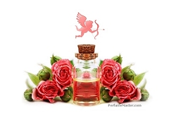 Top 3 Perfumes to Wear on Valentine's Day