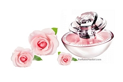 Scents for Valentine's Day - Best Perfume for Women