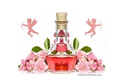 Top Selection of the Best Perfumes for her this Valentine's Day